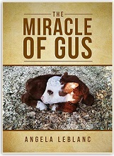 order the book, the Miracle of Gus, about a miniature hereford bull calf