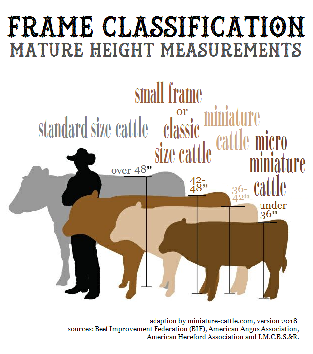 check for frame scores here