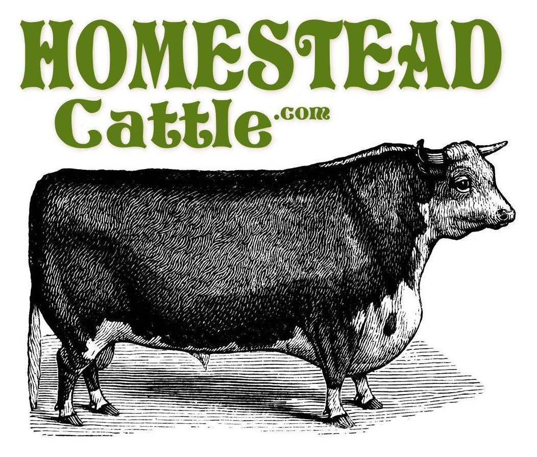 homestead cattle .com